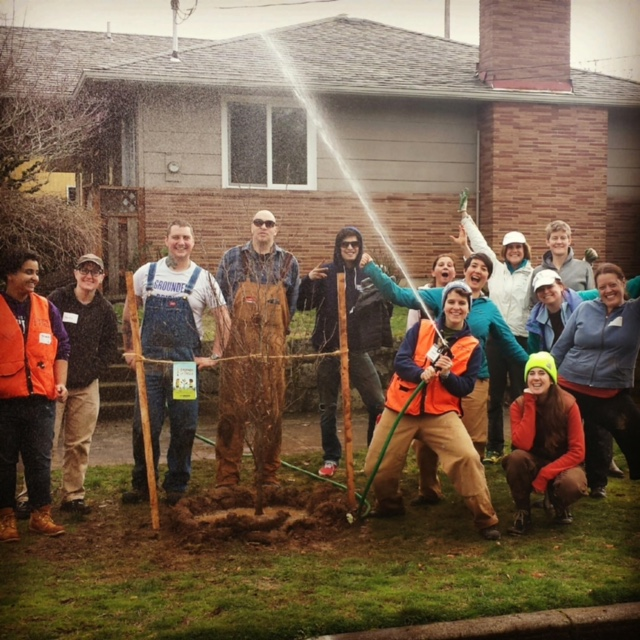 a group of people planting a tree in a neighborhood