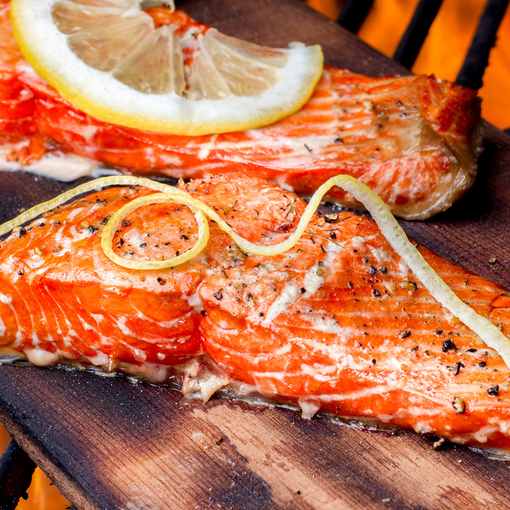 Wild caught king salmon filets topped with lemon slices and dill weed and coarse ground black pepper on top of a cedar plank on an old fashioned charcoal grill fully cooked and ready to be served.