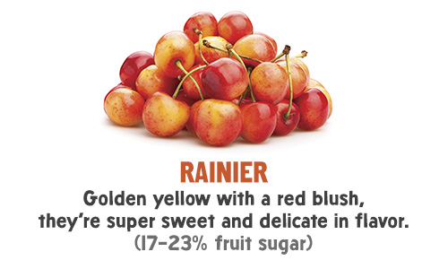 Rainier - Golden yellow with a red blush, they're super sweet and delicate in flavor. (17-23% fruit sugar)